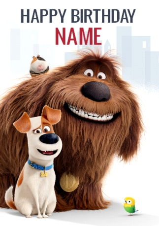 Secret Life Of Pets Birthday Cards Funky Pigeon