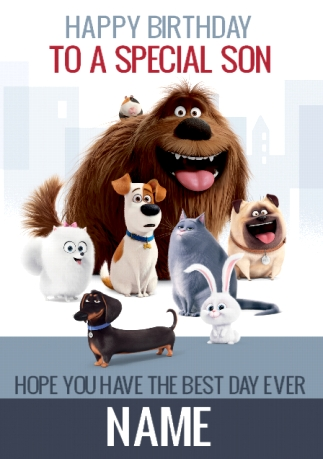 The Secret Life Of Pets Birthday Card To A Special Son Funky Pigeon
